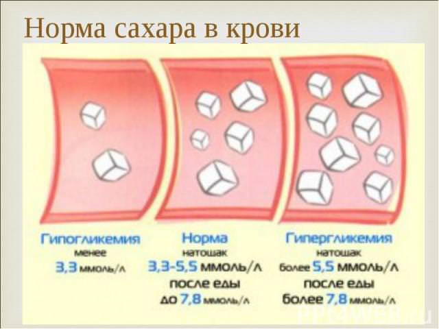 Флебодиа 600 при варикозном расширении вен малого таза