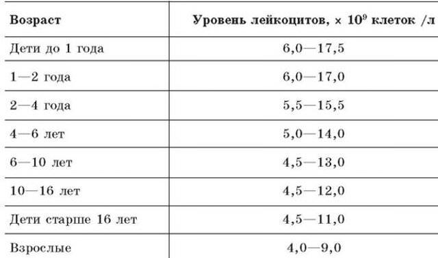 Количество лейкоцитов в норме при беременности