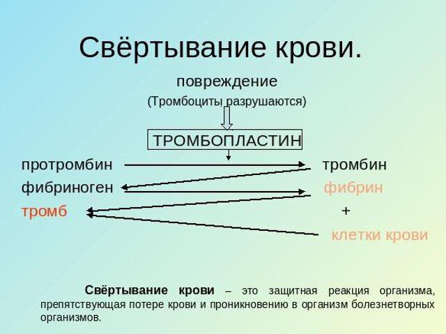 Справка из наркологического диспансера Челябинская улица