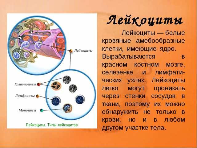кровянные клетки у беременных