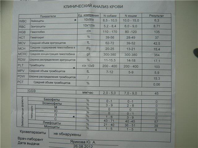 биохимический анализ кров