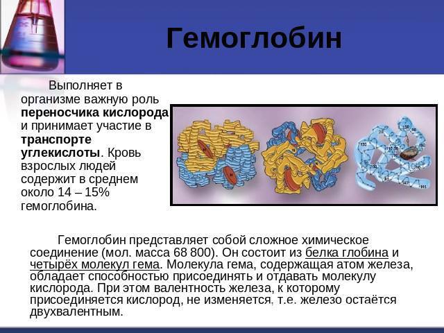 Норма гемоглобина в крови